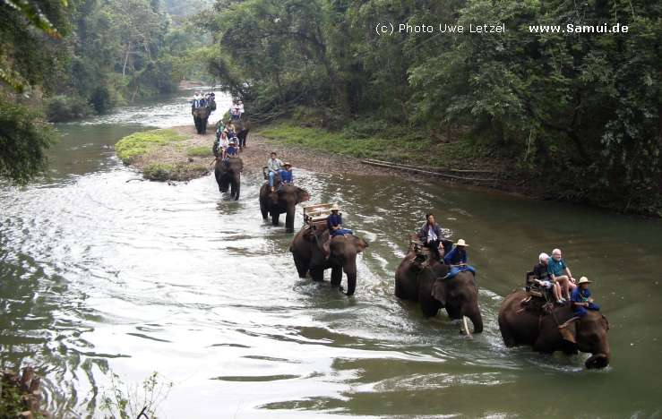 Chiang-Mai Hotels & Travel Information